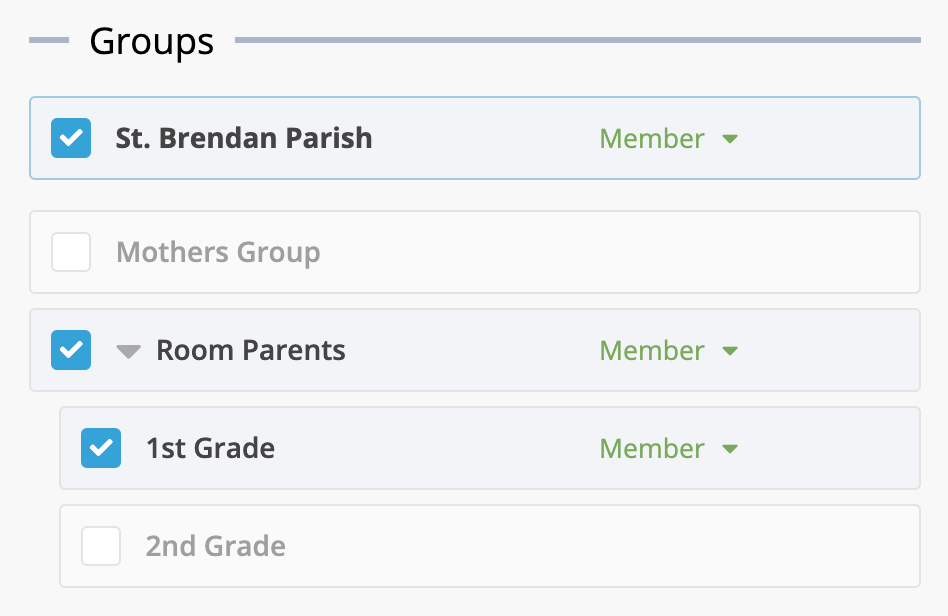 Screenshot of subgroups within a church